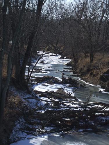 Beanblossom Creek
