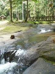 Crique de Fougassi (Thmas) Tags: de eau voiture cayenne route pont kaw guyane crique roura fourgassi
