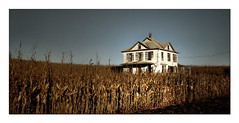 A Nebraska House in the Corn (McMorr) Tags: old family house fall abandoned home rural corn nebraska farm country neglected harvest eerie spooky forgotten weathered disused homestead discarded forsaken deserted abused fallingapart creativenonfiction
