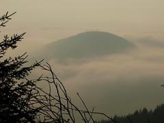 Nice weather.....altitude1500 feet.... (rolfspicture) Tags: tree fog germany landscape nebel forrest sauerland