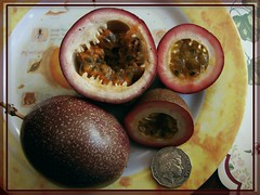 Passion fruit. Mаракуйя