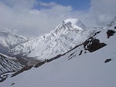 Nepal_2011_236 Kang La (Roger Nix's Travel Collection) Tags: nepal himalaya annapurna naar phu nar phugaon
