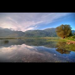 Il guardiano del lago (Vincenzo D'Ortenzio) Tags: nikon colorphotoaward vincenzodortenzio