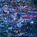 The Blue Spirit of Giverny!/L'âme bleue de Giverny! - by Denis Collette...!!!