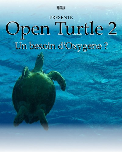 Open turle 2