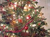 2005 Christmas Tree