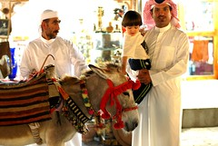 Souq Wakif - donkey rides