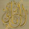 AL THANI (burzan) Tags: al khalifa hh thani hamad الشيخ بن فارس ال حمد امير خليفه سمو ثاني قطر الدوحه برزان burzan البلاد hawaalrayyanfav