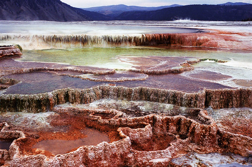 The Many Colors of Mammoth Hot Springs