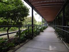 高知県立牧野植物園 Makino Botanical Garden