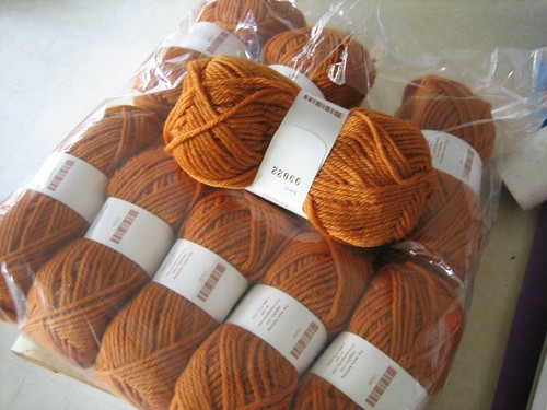 080302. pumpkin. wool of the andes.