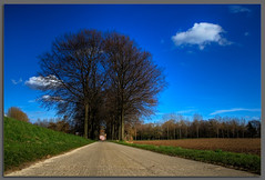 On the road ...... (fatboyke (Luc)) Tags: blue sky tree green television walking landscape cycling belgium farmers blossoms cottage route lane motorcycle fields series gras gps een cataract limburg haspengouw borgloon img9072 katarakt mywinners abigfave fruitfarming fietsroutenetwerk platinumheartaward fruitauction kataraktland bicycleroutenetwork
