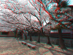 3D-anaglyph-R0012011