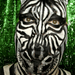 Zebra Facepainting Mini Movie por hawhawjames