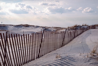 By the Dunes