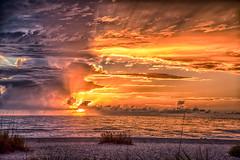 My+Florida