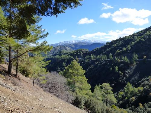 Troodos, en route to Kykkos Monastery (13)