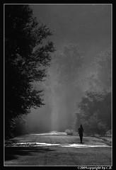 Hunter of light...(1) (baycibi) Tags: wood light mist leaves fog foglie shadows ombre canon5d matteo nebbia luce sunray bosco foschia raggiodisole canon24105l valleolona
