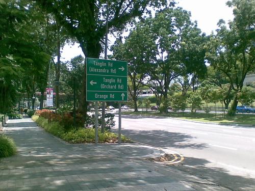 Gardens along Napier Rd