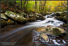 Smokies Stream Shot #1 (Judd Patterson) Tags: autumn fall water landscape stream tennessee appalachians stockphotography greatsmokymountainsnationalpark 5d365 juddpatterson treeofhonor