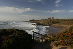 Bean Hollow State Beach