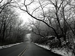 Winter Drive (Canicuss) Tags: road trees winter blackandwhite bw snow tree ice forest landscape woods mo panasonic kansascity missouri kc fz7 canicuss
