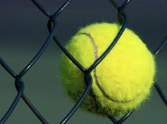 TennisBall par Sebastien.Cheniclet