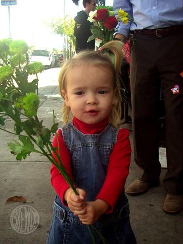 Gorrreeeeeeeeeeeeen! flowers