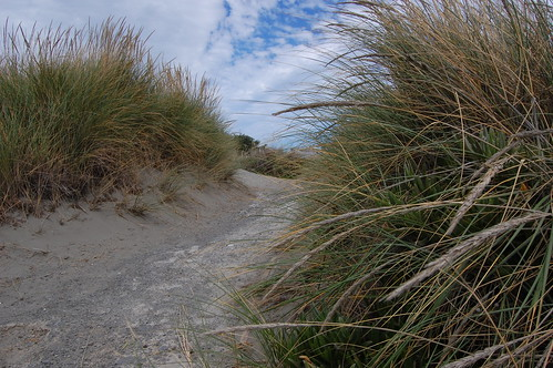 Nový Zéland - New Brighton