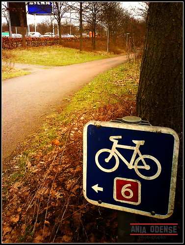 bicycle road