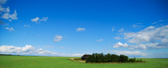 DSC_2510 (Sakuto) Tags: blue sky house color tree green nature field landscape village country panoramic belarus
