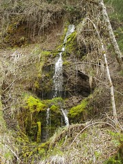 Waterfall and crevice