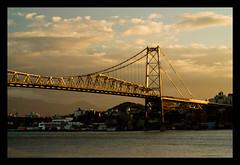 ponte d'ouro (VanMagenta) Tags: floripa brazil brasil flickr magenta florianopolis van vanmagenta 4sfgf