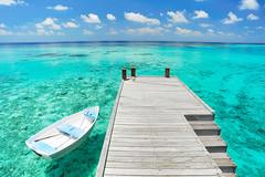 Weekend wallpaper (muha...) Tags: blue white holiday reflection tourism beach water pool umbrella island chair nikon calm palm swimmingpool destination maldives creativecommon muha huvafenfushi freewallpaper