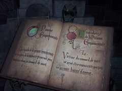 Evil Queen's Potions Book (Elysia in Wonderland) Tags: white holiday snow paris apple recipe book ride disneyland evil august disney queen queue glowing poison eurodisney 2009 elysia potions