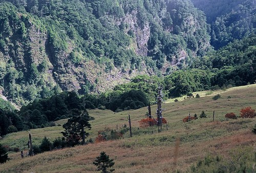 369 Lodge Pasture