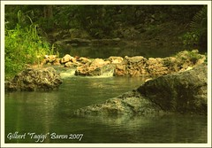 "Somewhere in Kawasan (Gilbert ""Tagigi"" Baron) Tags: river philippines falls finepix cebu gilbert fujifilm kawasan baron badian cebusugbo matutinao s9600 tubod pinoykodakero tagigi"