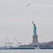 Birds over Liberty
