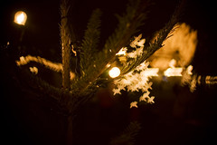 My own Bokeh