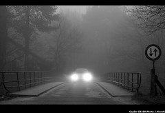 Underway ... (Hans van Reenen) Tags: winter blackandwhite bw mist car fog bravo mood noiretblanc fav50 nederland thenetherlands fav20 invierno oneway cinematic fav30 atmosfera underway malden arbolitos fav10 firstquality molenhoek fav100 fav40 fav60 fav110 fav90 fav80 fav70 fav120 aplusphoto 20070213 infinestyle ricohcapliogx100