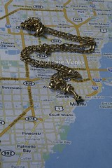 i wish my dream can come true (drkredduckie) Tags: gold necklace miami map palmtree roadmap 305