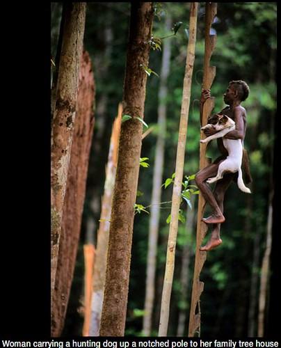 28 imágenes sorprendentes de un pueblo que aún vive en los árboles | Tree People por George Steinmetz ceslava 5