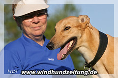 O'Lala vom Monarchenhügel - Greyhound
