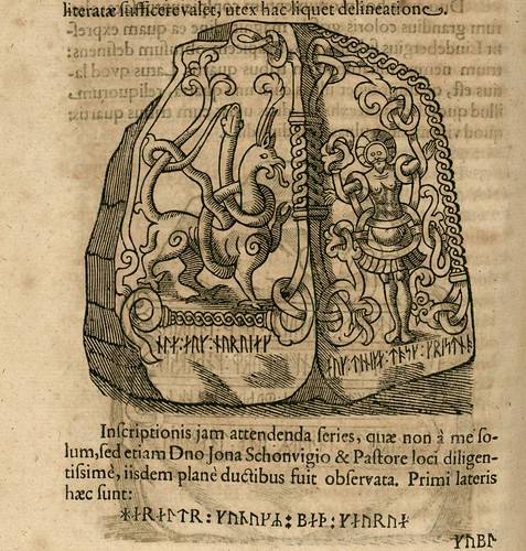Danicorum monumentorum - Ole Worm - 1643 - 0355
