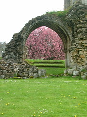 Kirkham Priory (puffin11uk) Tags: yorkshire helmsley priory northyorkshire kirkham kirkhampriory augustinian augustinianpriory 50club puffin11uk