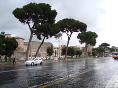 ruins (bargainville) Tags: italy rome foriimperiali lazio