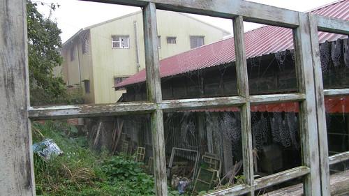 11.老舊的窗格及蜘蛛網