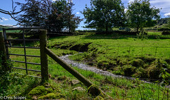 Fence Fridays - Babbling Brook. (Chris Scopes) Tags: fence landscapes landscape green grass derbyshire peak district
