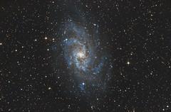 M33 - The Triangulum Galaxy (Antoine Grelin) Tags: m33 triangulum galaxy nebula astrophotography astronomy nasa space stars love nevada canon 7d mii astrometrydotnet:id=nova1942402 astrometrydotnet:status=solved
