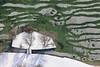 Ice At The Beach (Aerial Photography) Tags: by obb sta 18022009 1ds24515 bäume eis fotoklausleidorfwwwleidorfde grün kälte landschaft laubbaum luftaufnahme luftbild nepomukweg schnee see starnberg starnbergersee stimmung strand strandbad strandbadstrase ufer wasserpark weis winter aerial beach coldness deciduoustree foliagetree green ice lake landscape leaftree mood outdoor shore snow trees verde white bayernbavaria deutschlandgermany deu